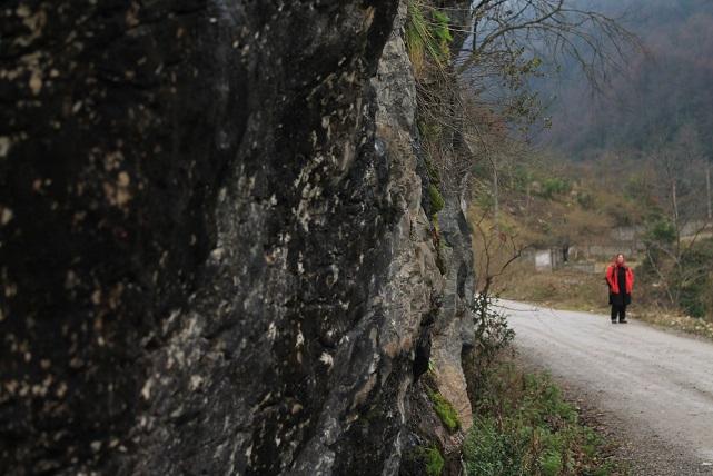 http://piclog.persiangig.com/image/picsa/a%20%284%29.JPG